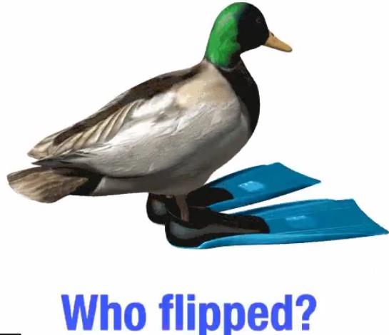 if it looks like a duck...dumb Fessy